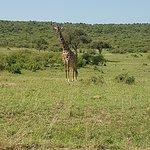 Sojourn Safaris Photo