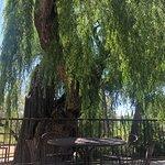 Ojo Santa Fe Spa Resort – fotografia