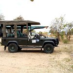 A remarkable safari for you is our core mission