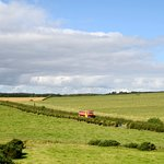 You'll have the best view of the Isle of Bute from our open top bus tour.