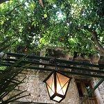 صورة فوتوغرافية لـ Paradies Garden