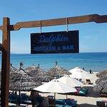 Dolphin Kitchen & Bar照片