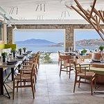 NOA Greek Restaurant