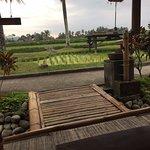 ภาพถ่ายของ Bale Udang Mang Engking