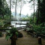 Foto The Lake House