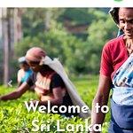 www.srilankasanjeewatours.com