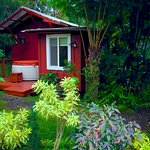 Volcano Artists Cottage