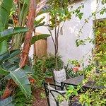 Beautiful hidden garden seating