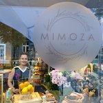 Zdjęcie Mimoza