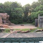 Beautiful amphitheater!