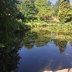 4.  Queen Elizabeth II Jubilee Gardens, Bewdley