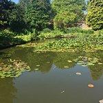 5.  Queen Elizabeth II Jubilee Gardens, Bewdley