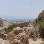 En Gedi Nature Reserve