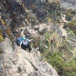 #kilimanjaro #tanzania #africa #travel #adventure #hiking #mountains #mountain #nature #trekking #climbing #mountkilimanjaro #wanderlust #summit #kili #explore #travelphotography #photography #travelgram #mtkilimanjaro #hike #uhurupeak #safari #instatravel #landscape #photooftheday #outdoors #sevensummits #trek #mountaineering kilimanjaro #tanzania #uhurupeak #africa #mountkilimanjaro #travel #summit #hiking #mountain #mountains #adventure #trekking #mountaineering #climbing #mtkilimanjaro #uhur