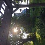 Sitting under the gazebo and enjoying the garden!