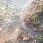 Steam vent