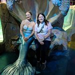 meeting a mermaid. She later swam in the tank with sharks and stingrays
