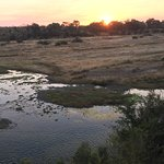 Saw Hyena, waterbuck, elephant, crocs and more from the deck