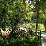 Vivanta Sawai Madhopur Lodge