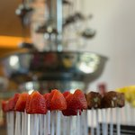 white and dark chocolate fountain with fruit selection