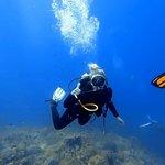 Valokuva: Dive Point Dive Center