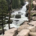 תמונה מAlberta Falls
