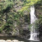 写真箕面の滝枚
