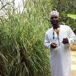 Amo Zanzibar Tours & Safaris Photo
