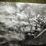 Photo du site durant la guerre