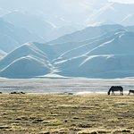 Kol-Suu valley. Naryn region. Kyrgyzstan