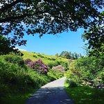 Our beautiful location, Avon Dam, Dartmoor