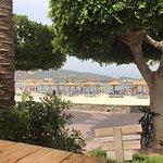 Zdjęcie The Olive Tree Mallorca