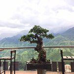 Photo of Sapa Sky View Restaurant & Bar