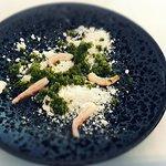 Sladkovodní krevety s bazalkovým sorbetem