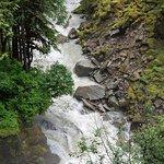 Nooksack Falls 사진