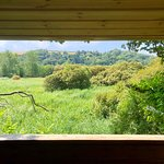 Slapton Ley Nature Reserve照片