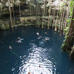 Cenote on the Chichen Itza Tour. So beautiful and even had a rope swing!