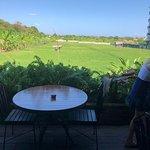 Barbacoa Bali照片
