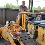 We dined on their clean, comfortable, dog-friendly patio with 3 dogs.