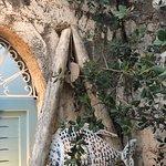 Bilde fra Casa Grec