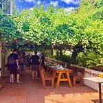 תמונה של Tishbi Winery Restaraunt