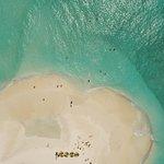 Barefoot Maldives