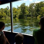 Wakulla Springs Boat Tour