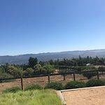 Long Meadow Ranch Winery照片