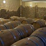 Domaine Florian cellar
