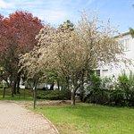 La maison est située près de la rivière Richelieu.  On retrouve un très petit stationnement.  Vérifiez les heures d'ouverture sur le site web du musée des beaux-arts du Mont Saint-Hilaire