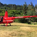 added on a helicopter bear viewing tour and they dropped us off right in front of our cabin!