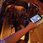 Burger & Lobster - Soho照片