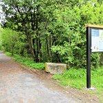 Le sentier menant à l'Arboretum Stephen Langevin