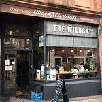 The Wildcat Foto